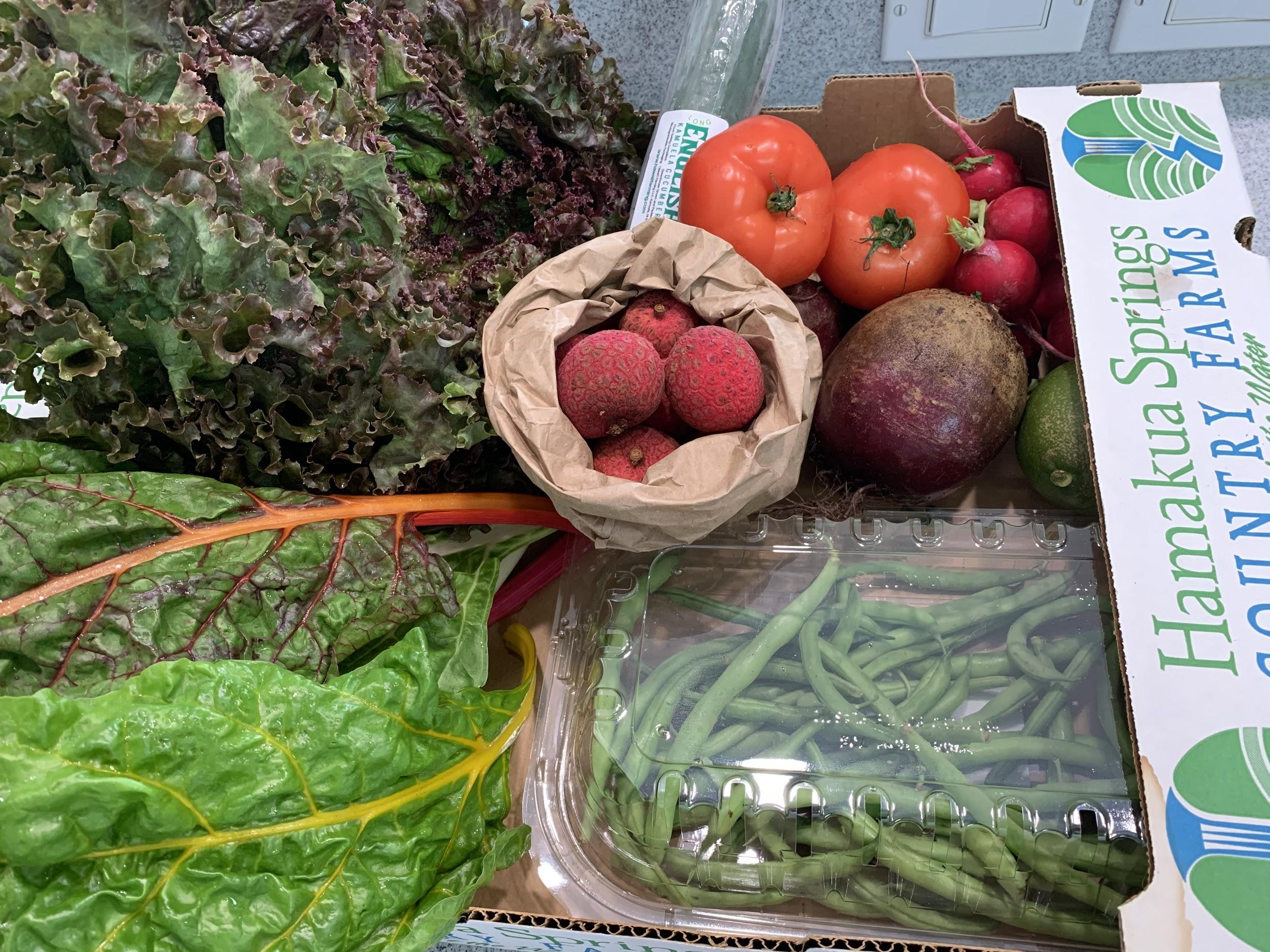 CSA Produce Box full of lychee fruit, lettuce, tomatoes and more!